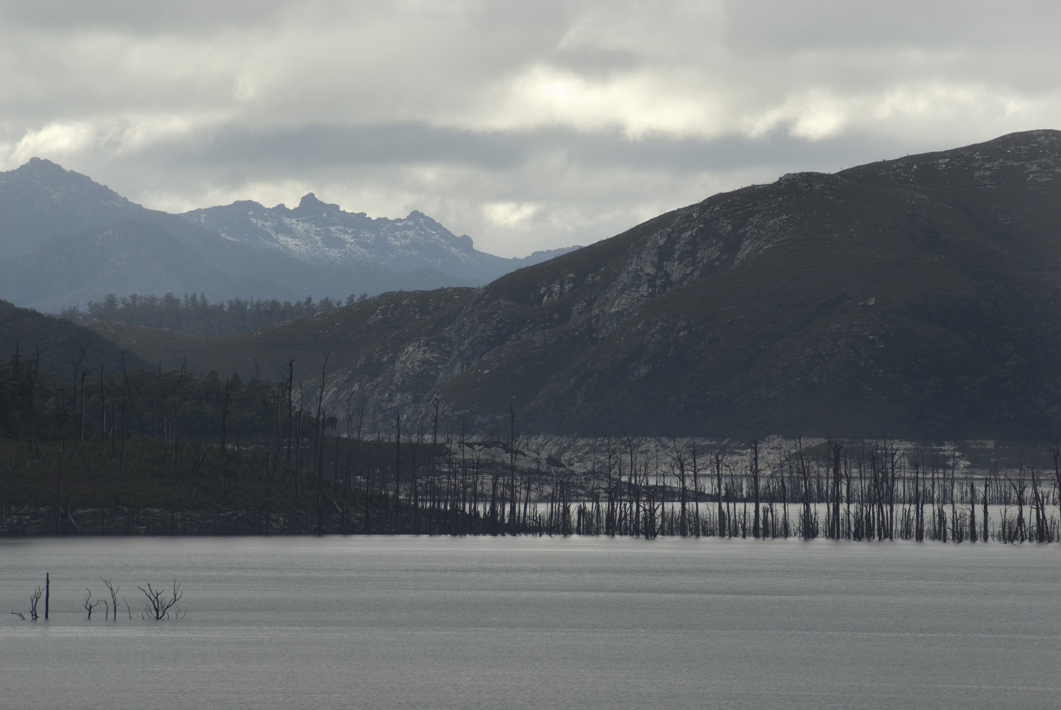 bleak landscape in lake gordon, created by the damming of the gordon river by the gordon dam hydro electric project
