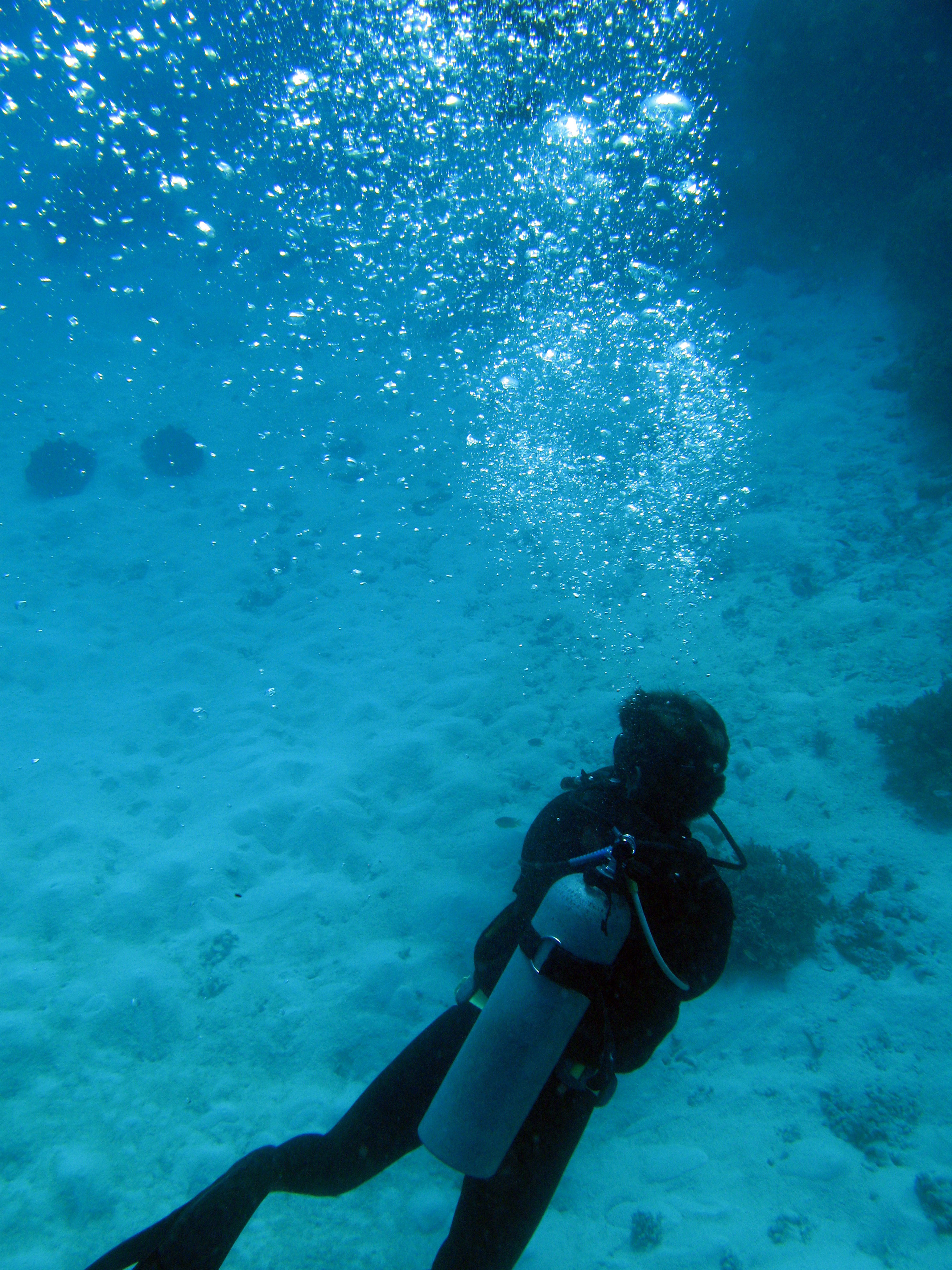 scuber divers underwater leaving a trail of bubbles as they exhale. At shallower depths the breath compress air in the same mix as the atmosphere, deeper dives require specialised gas mixes